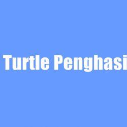 Happy Turtle Penghasil Uang